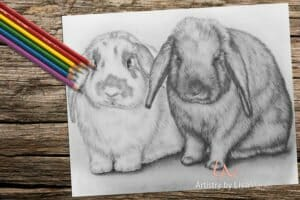 twobunnies_coloringpage-on-wood